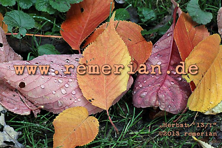 Herbst '13/i