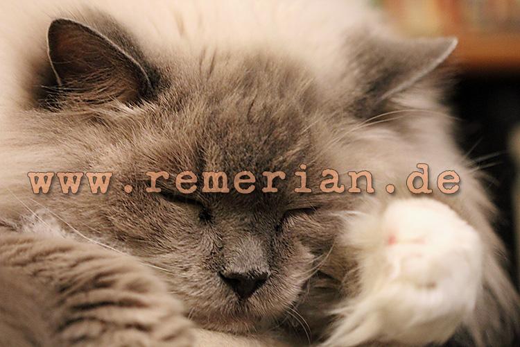 (c) 2013 remerian