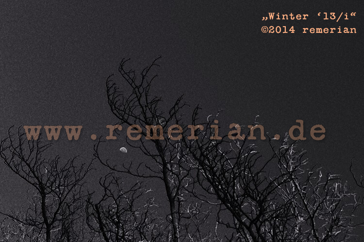 (c) 2014 remerian