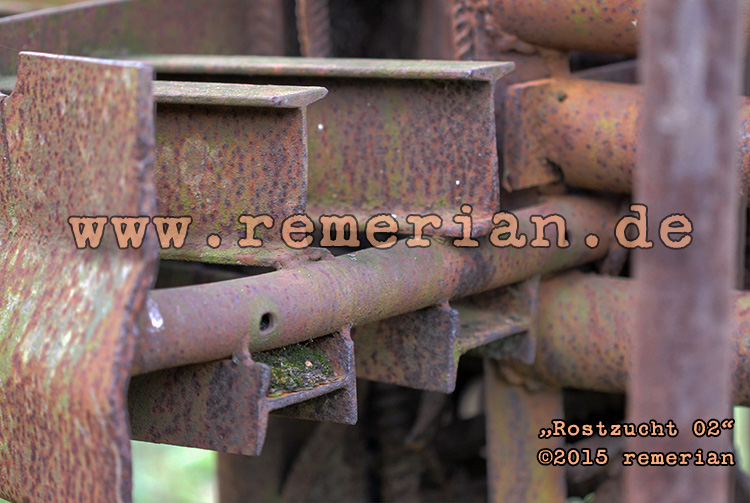 2015-10-13_IMG_0171_2_3b